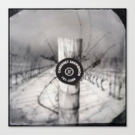 Cabernet - black and white wine photo vineyard Canvas Print