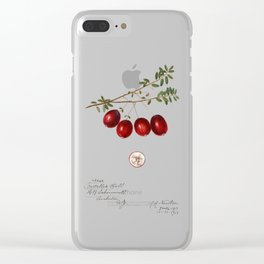 American Cranberry Clear iPhone Case