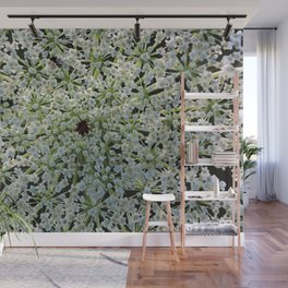 Queen Annes Lace Wildflower in Horicon Marsh Wisconsin Wall Mural