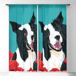 Border Collie And Poppies Blackout Curtain