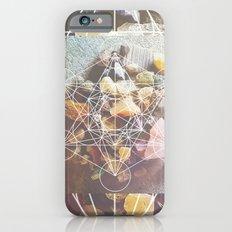 backyard stones Slim Case iPhone 6s