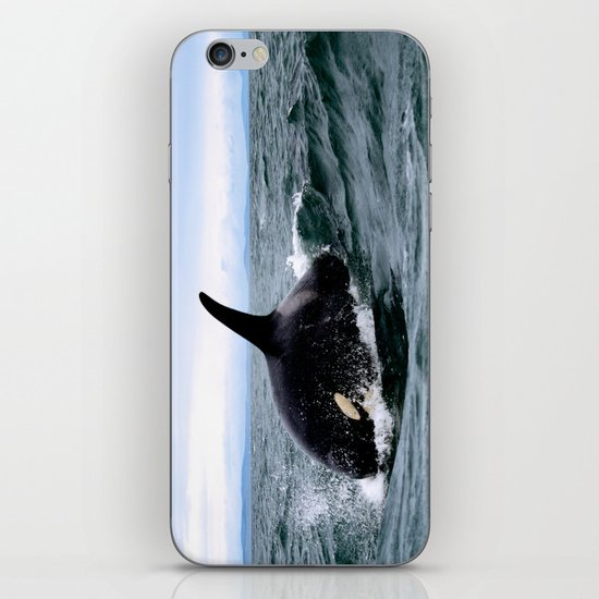 Willy iPhone & iPod Skin