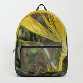 Blazing Star Backpack