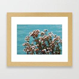 lago llanganuco Framed Art Print