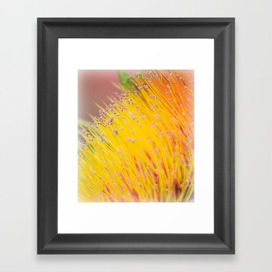Through a Field of Yellow Framed Art Print