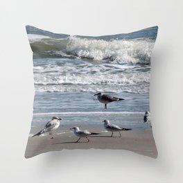 seagull play Throw Pillow