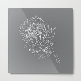 King Protea Outline - Grey and White Metal Print