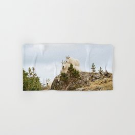 Three Ami-Goats // Scenic Hike Animals Photograph Colorado Wildlife National Park Mountain Goats Hand & Bath Towel