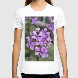 Purple Honesty T-shirt