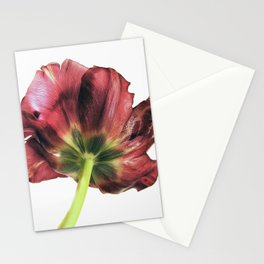 Another point of view Stationery Cards