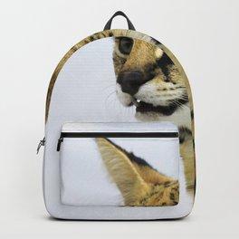 Serval Backpack
