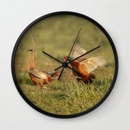 Pheasants fighting. Wall Clock