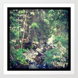Mountain Stream Vail Art Print