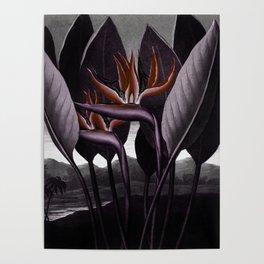 Birds of Paradise : Temple of Flora Dark Poster
