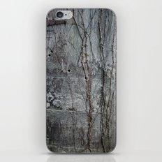 Vine and Hinge iPhone & iPod Skin