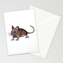 Brown Mouse, Oil Pastel Art, Little Critter Stationery Cards