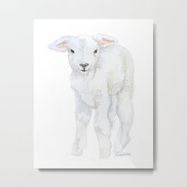 Lamb 2 Watercolor Metal Print