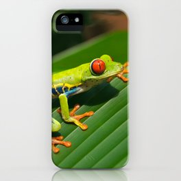 Green Tree Frog Red-Eyed iPhone Case