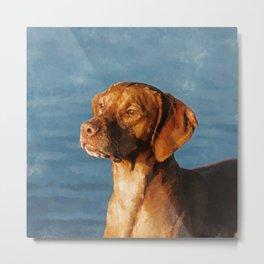 Vizsla dog - Hungarian hound Metal Print