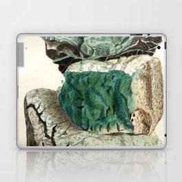 Vintage Mineralogy Illustration Laptop & iPad Skin