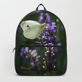 White Butterfly in a Lavender Field Backpack
