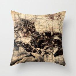 most phanastic tomcat ever Throw Pillow