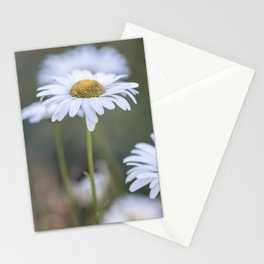 Summertime Divine Stationery Cards