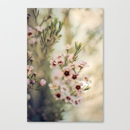 Breath of Spring Canvas Print