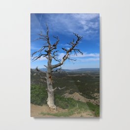 You're Still On My Mind Metal Print