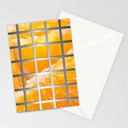 Orange Slices & Square Grid Collage Metallic Stationery Cards