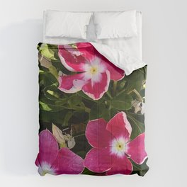 Red and Pink Garden Flowers in Dappled Light Comforters
