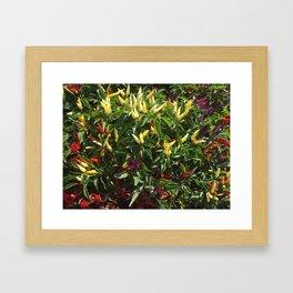 Pepper Spray #Photography Framed Art Print