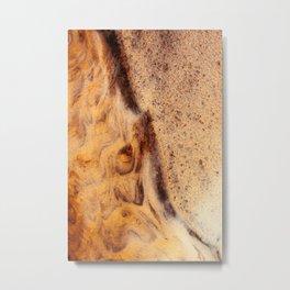 African Earth Metal Print