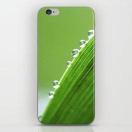 On The Edge Of Green - Water Drops Macro iPhone Skin