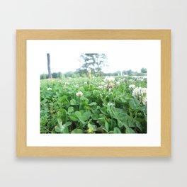 More Wildflowers & Grass Framed Art Print
