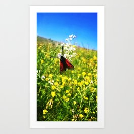 Red fly Art Print