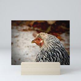 American Wyandotte Chicken Mini Art Print