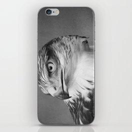 Red-tailed Hawk II BW iPhone Skin