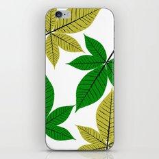 Horse Chestnut Leaves iPhone & iPod Skin