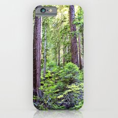The Light Through the Woods iPhone 6s Slim Case