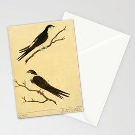 Martin or Martlet or Sand or bank Martin6 Stationery Cards