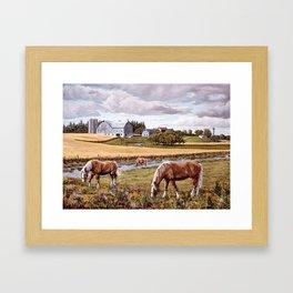 Brubacher's farm Framed Art Print