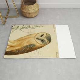 Naturalist Barn Owl Rug