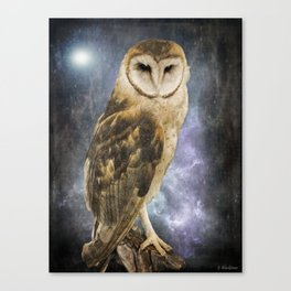 Wise Old Owl - Image Art Canvas Print