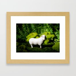 A white sheep in the forest Framed Art Print