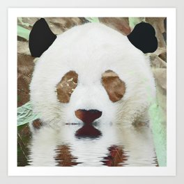 Panda Reflection Art Print