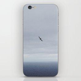 Lone Sea bird  iPhone Skin