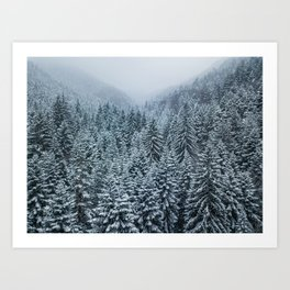 Winter in the wild forest Art Print