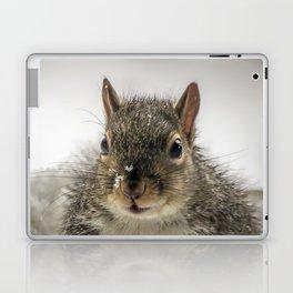 Adorable Praying Squirrel..Feed ME!! Laptop & iPad Skin