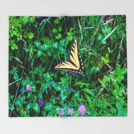 A Butterfly Using Its Wings Throw Blanket